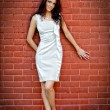 Sexy young elegant woman in front of brick wall — Stock Photo