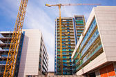 Scaffolds and cranes at construction site — Stock Photo