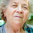Face of charming senior old woman — Stock Photo #9980772