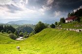 Piękny wiejski krajobraz z rumunii — Zdjęcie stockowe