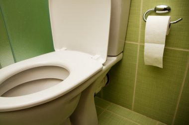 Toilet seat and paper in bathroom