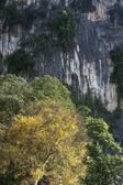 Batu cave Malaysia — Stock Photo