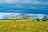 Tundra ve dağ — Stok fotoğraf
