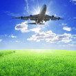 Airplane fly over grass — Stock Photo #8755836