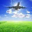 Stock Photo: Airplane fly over grass