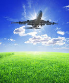 Airplane fly over grass — Stock Photo