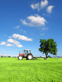 Tractor on grass — Stock Photo