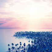 Beautiful dream island. View from sky — Stock Photo
