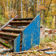 Abandoned and ruined cottage in the woods. Now it is only a fall. — Stock Photo