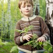 Smiling little boy in spring birch sunny forest — Foto Stock