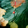 Autumn fishing. Bobber float in water with yellow leafs. — Stock Photo