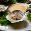 Oysters — Stock Photo #8889377