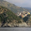 Outskirts of Riomaggiore — Stockfoto #9939755