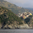 The Outskirts of Riomaggiore — Stock Photo