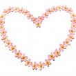 Frangipanis Arranged in Heart Shape — Stock Photo #10379720