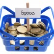 Shopping Basket with Coins — Foto de Stock