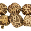 Stock Photo: Shitake Mushrooms