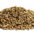 Stock Photo: Herbal ajwain seeds