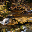 Spring stream at sunlight - Stock Photo