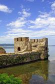 Torre della fortezza di golubac serbia — Foto Stock