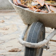 Wheelbarrow with waste - Stock Photo
