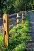 Fenced Path to Woods — Stock Photo