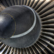 Stock Photo: Jet engine inlet turbo vanes