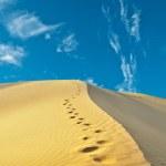 Sand desert — Stock Photo #8312835