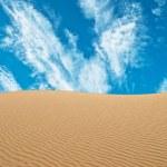 Sand desert — Stock Photo #8312846