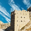 Stock Photo: Aleppo Castle in Syria