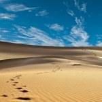 Sand desert — Stock Photo
