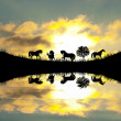 Royalty-Free Stock Photo: Safari in Africa. Silhouette of wild animals reflection in water.