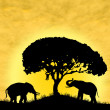 Stock Photo: Safari in Africa. Silhouette of wild animals reflection in water.