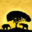 Safari in Africa. Silhouette of wild animals reflection in water. — Stock Photo #8313332