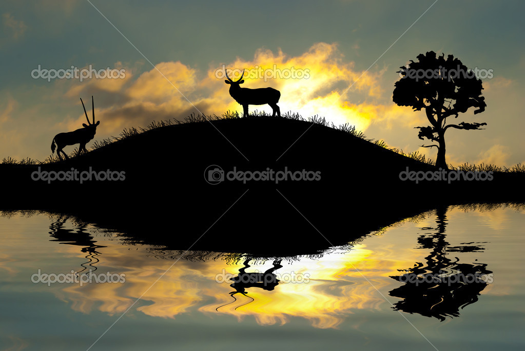 Safari in Africa. Silhouette of wild animals reflection in water.   Stock Photo #8313325