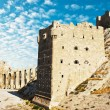 Aleppo Castle in Syria - Stock Photo