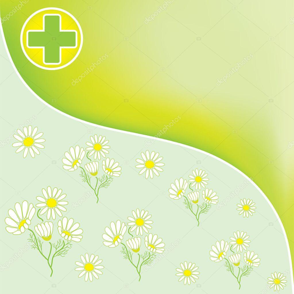 Fondo verde farmacia con Cruz médica y manzanilla oficinal