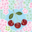 Cherry berry and flowers seamless composition — Stock Vector