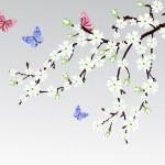 Cherry blossom — Stock Vector