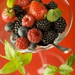 Berry fruit — Stock Photo #8884848