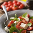 Caprese salad — Stock Photo #8911294