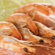 Fresh prawns — Stock Photo