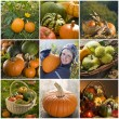 Halloween-collage — Stockfoto