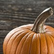 Pumpkin — Stock Photo #9025573