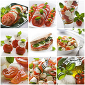 Mozzarella collage — Stock Photo