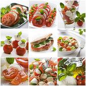 Mozzarella collage — Stock Photo