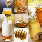 Honey collage — Stock Photo