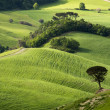 Tuscany - 