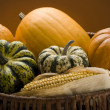Harvest — Stock Photo #9764256