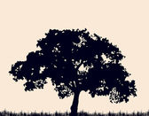 Silhouette of tree with grass. Vector — ストックベクタ